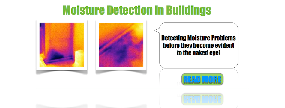 Detecting Moisture Problems In Buildings